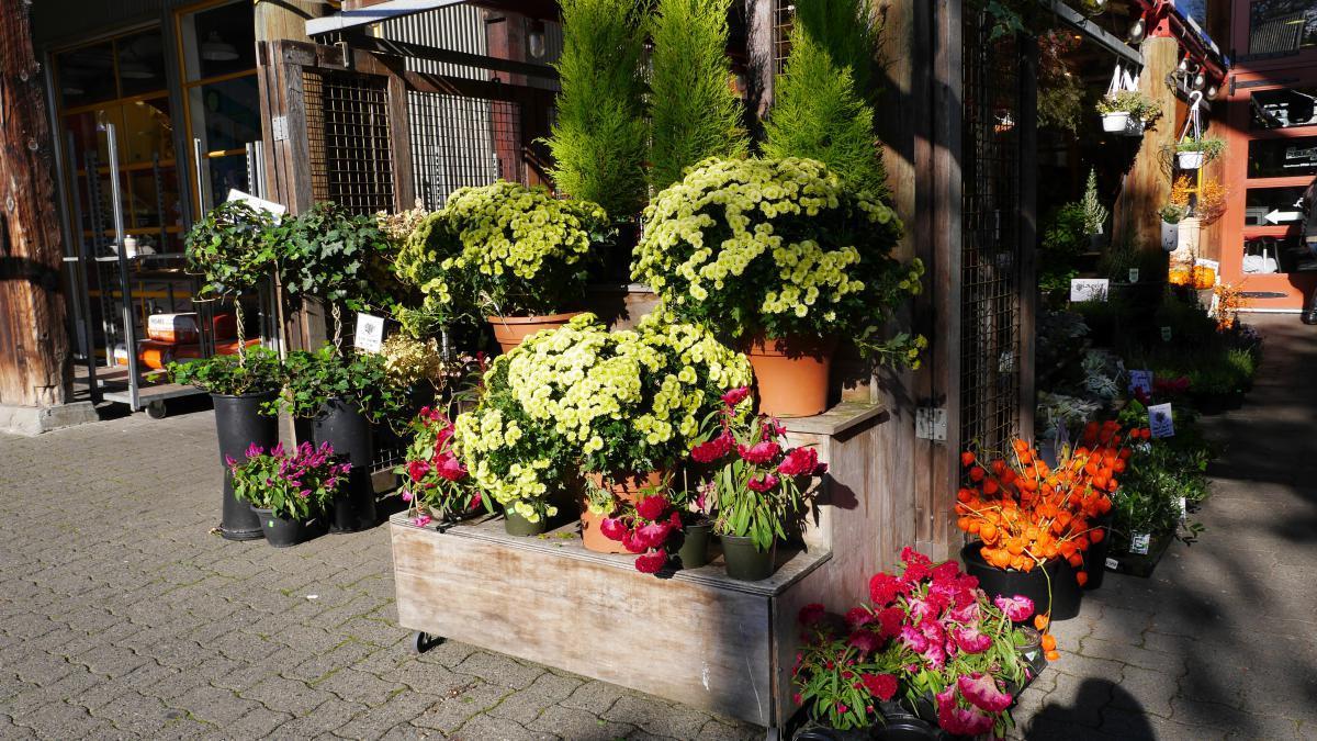 Kanada: Vancouver, Granville Island Market